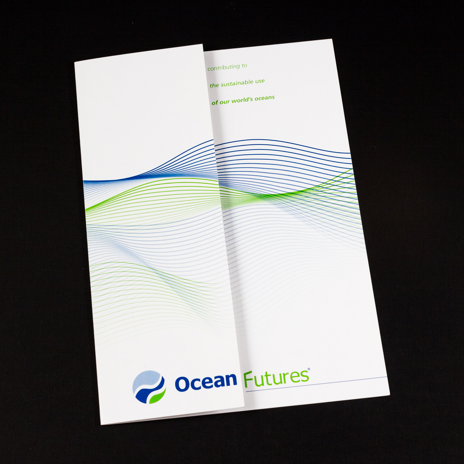 PRINT DESIGN - Ocean Futures | brochure - ©UnParalleled, LLC dba UP-Ideas / Roger Sawhill / Mark Braught - Atlanta, Georgia | Lawrenceville, Georgia | Commerce, Georgia